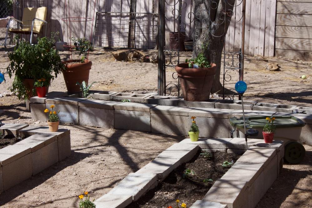Our Garden (2/6)